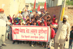 'We Are One': Why Punjab's Landless Dalits are Standing with Protesting Farmers