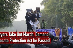 Watch | Lawyers Take Out March in Delhi, Demand 'Advocate Protection Act' Be Passed