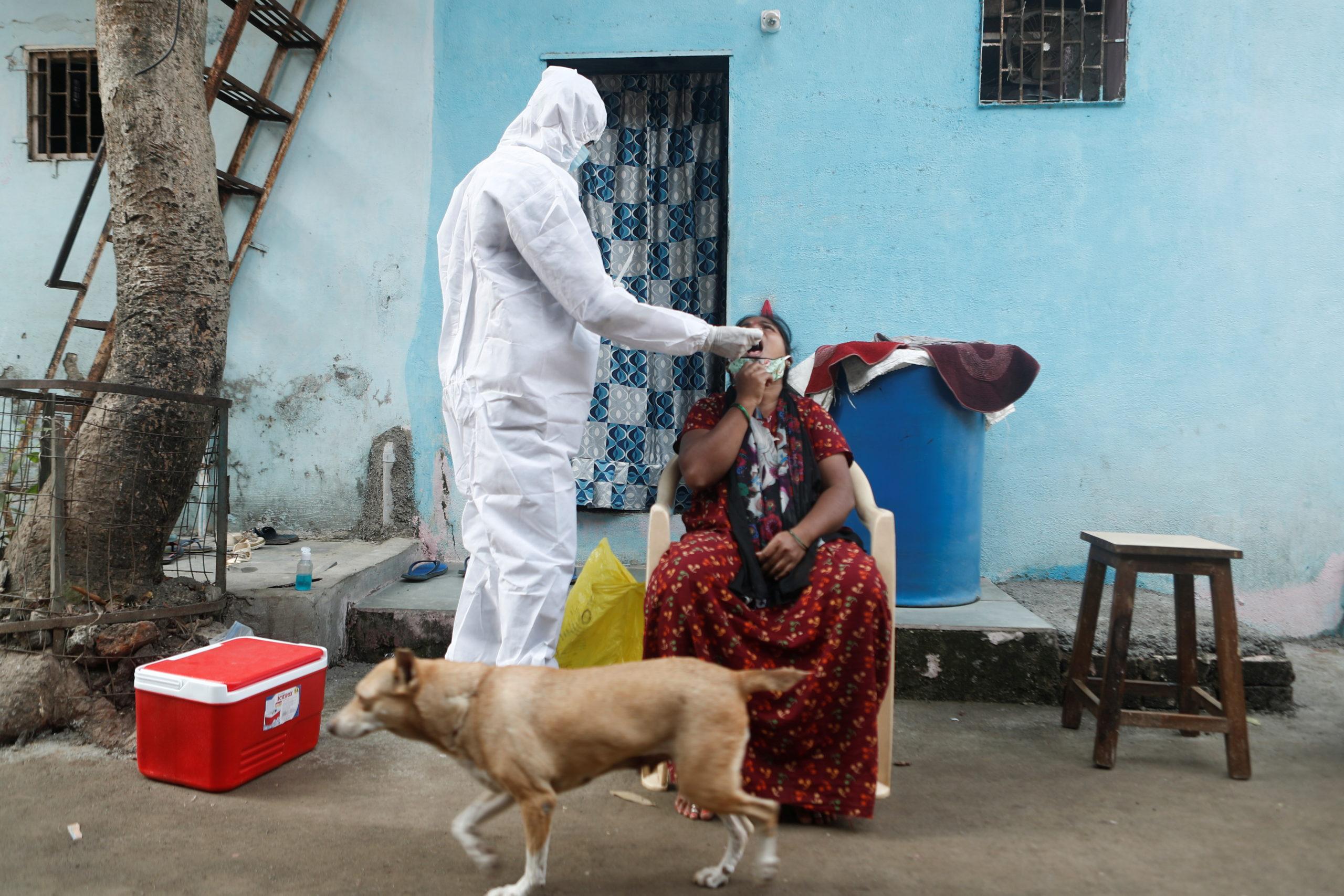 Virus Variants May Not Be Behind COVID-19 Upsurge in Maharashtra, Kerala – The Wire Science