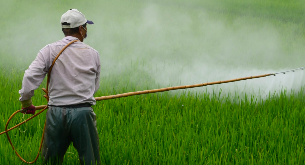 The Quest for a New Strategy To Reduce Suicide by Pesticide Poisoning – The Wire Science