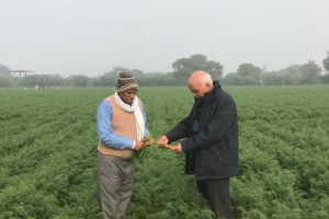 In Sikandrabad, a Farmer Tries to Forge a New Trust-Based Contract Model for Agriculture