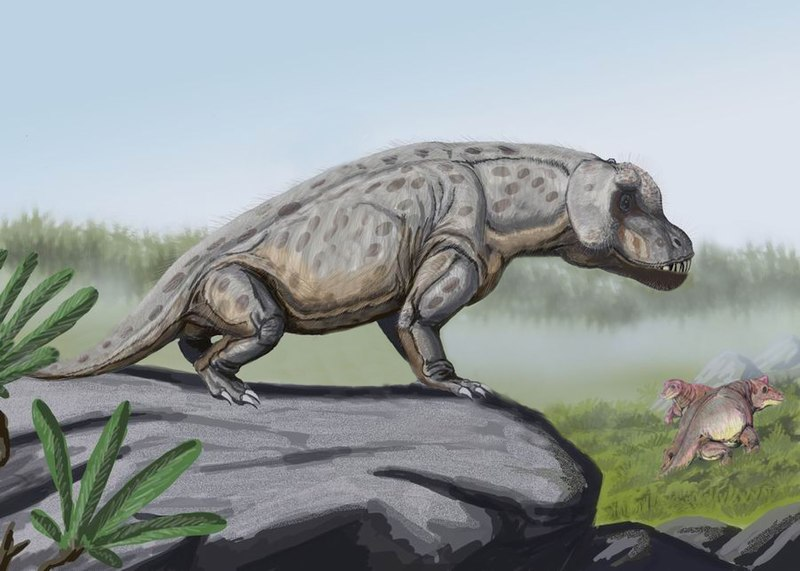 Heavy Mammal Ancestor Was Swift Hunter, Finds Study - The Wire Science
