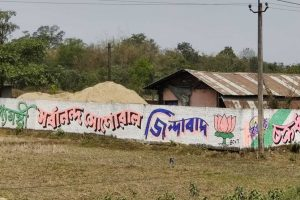Ground Report: In Upper Assam, Voters Are Torn Between Choosing a Candidate or a Party