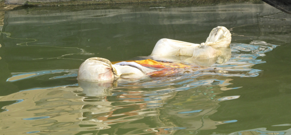 COVID-19 in Bihar: Horror in Chausa Town As Dead Bodies Wash Up on Banks of Ganga