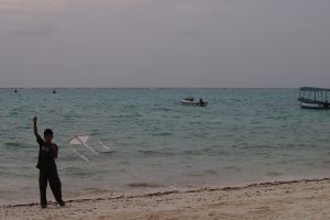 In Lakshadweep, a Political Administrator Courts Ecological Mayhem
