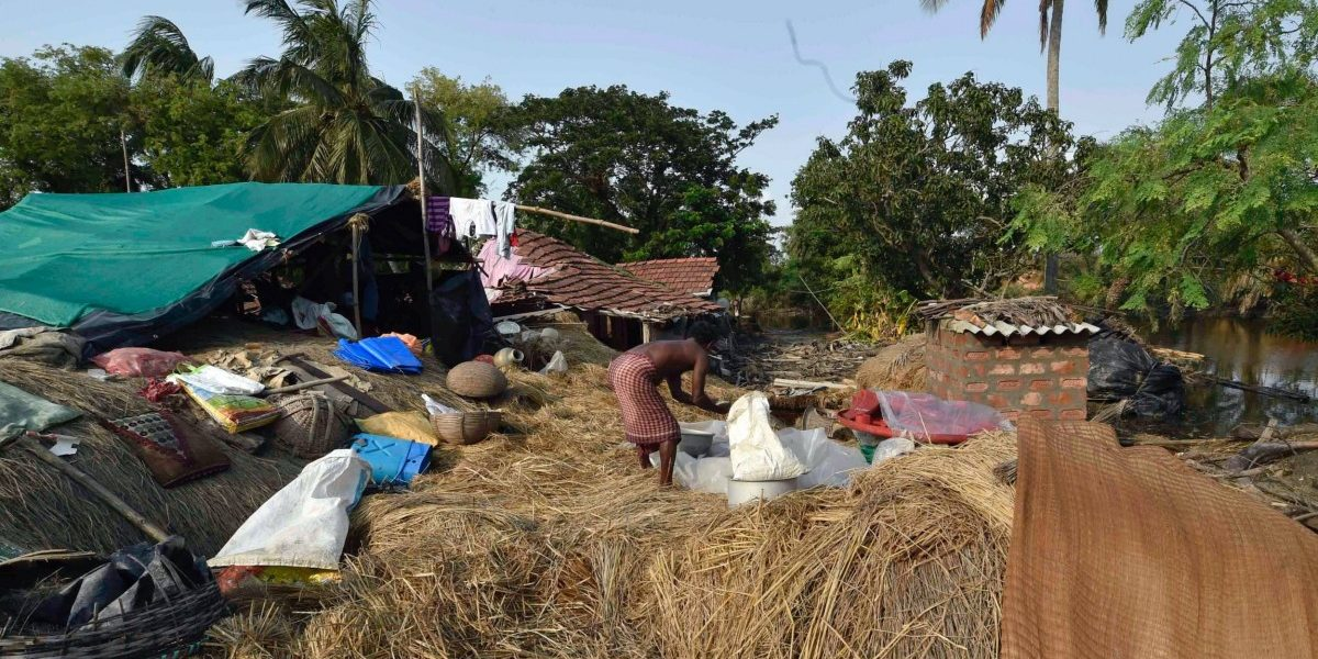 Sundarban Farmers Need a Rice Variety That Is Salt-Tolerant But Also Marketable