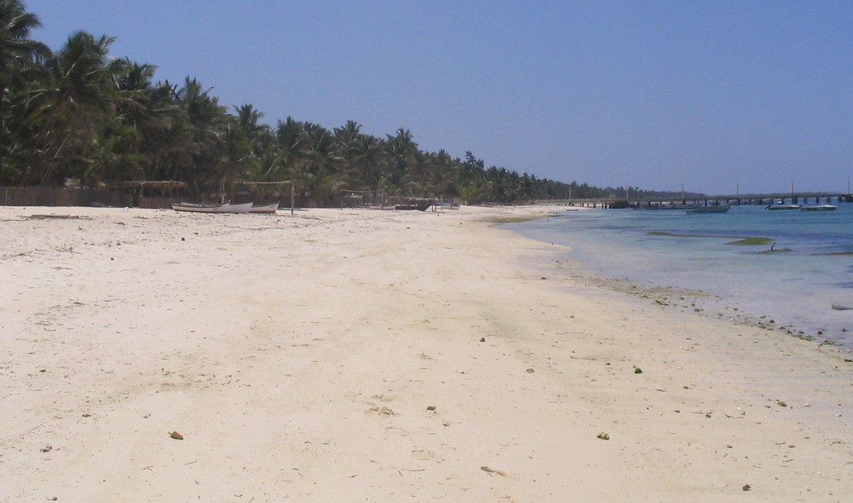 The Developers Are Coming, and Lakshadweep Lives on Borrowed Time – The Wire Science