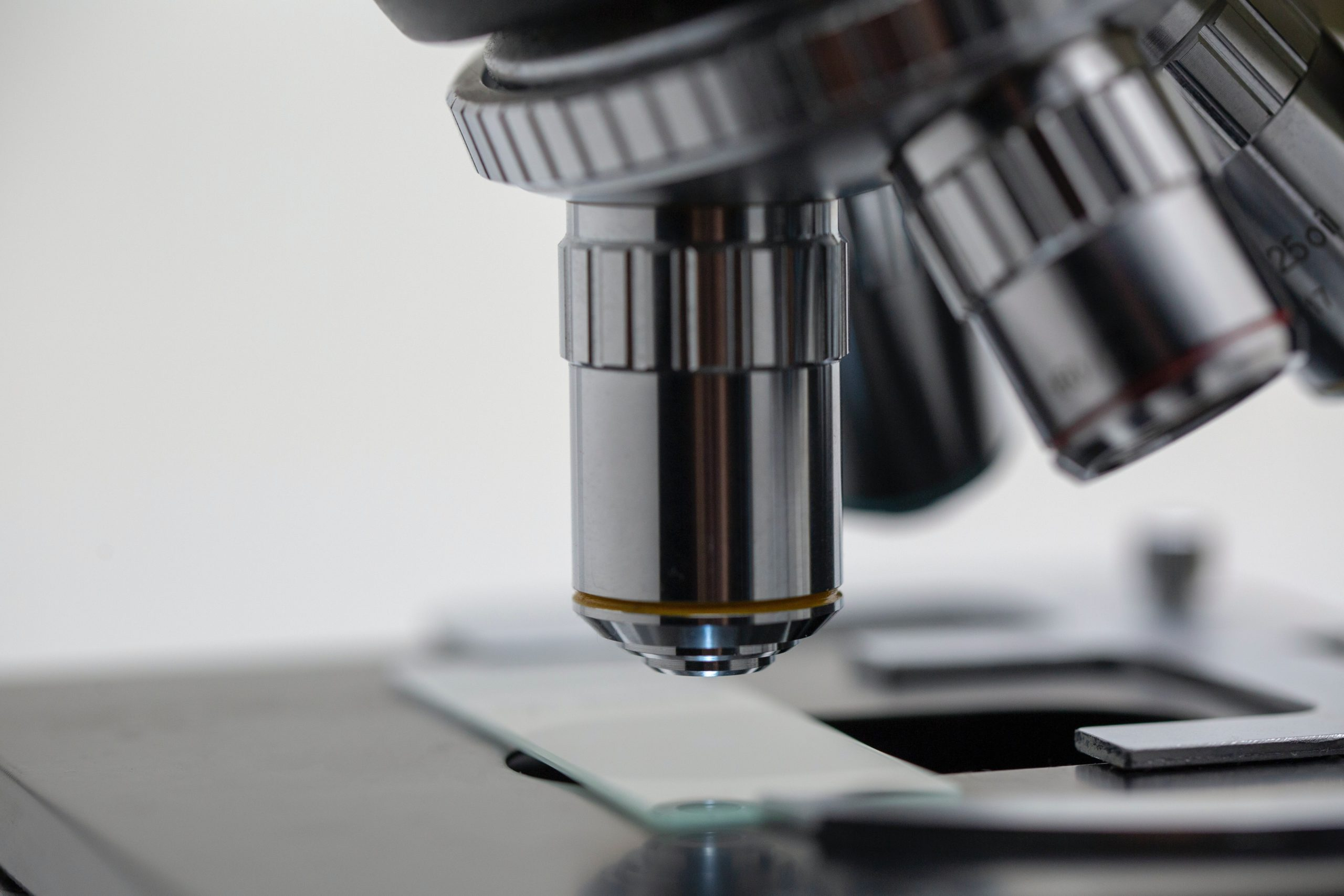 Latest Edition of UNESCO Science Report Offers Overview of STI in India – The Wire Science