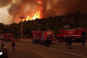 How Austerity Stoked the Wildfires Ravaging Greece