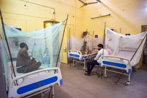 Undercounting, Delayed Reports, Water Shortage: Why Dengue Is Spreading Like Wildfire in UP
