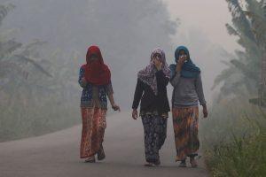 UNHRC Declares Access to a Clean Environment a 'Fundamental Right'